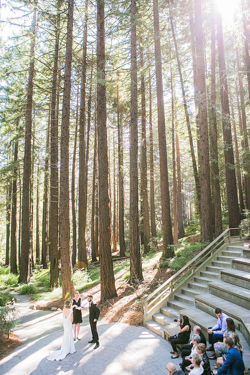BerkeleyWeddingPhotography_SeattleWeddingPhotographer_0856.jpg