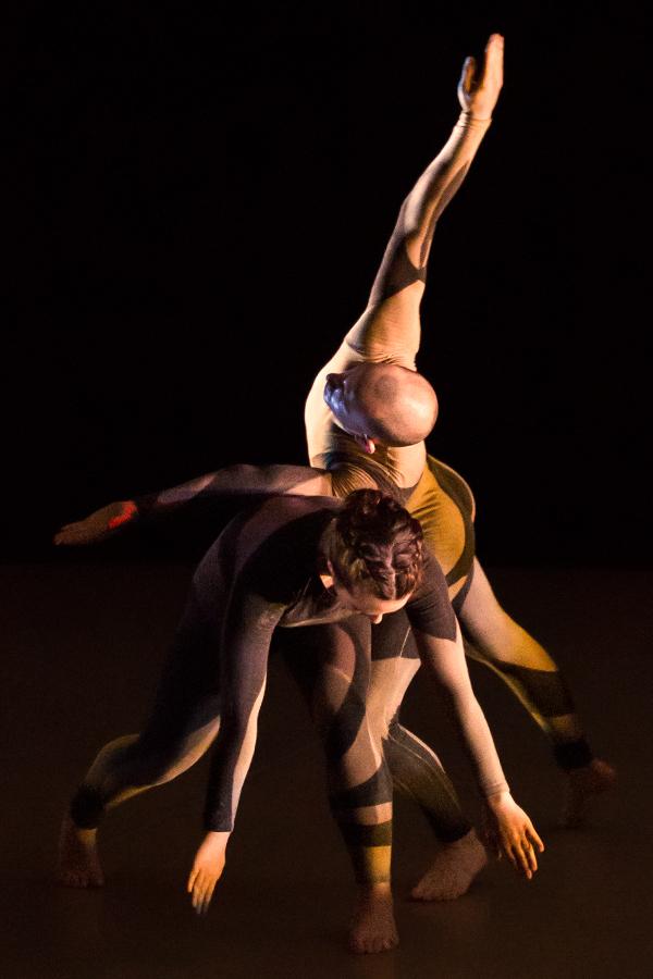 Dances on Wood