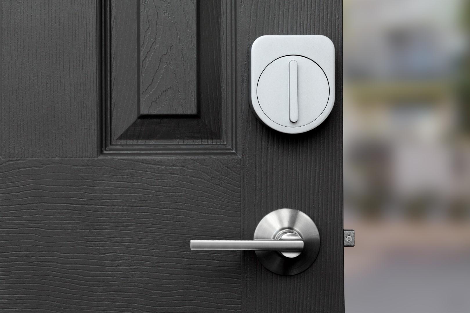 Grey_door (Large).jpg