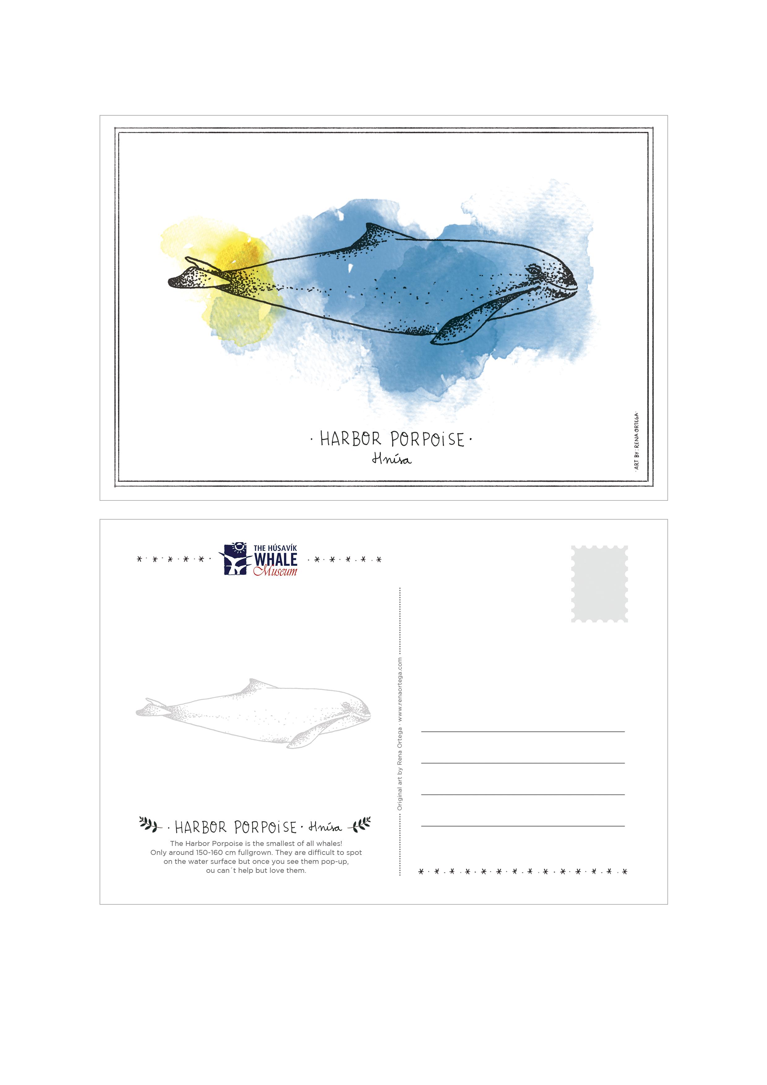 postcard_harbor.jpg