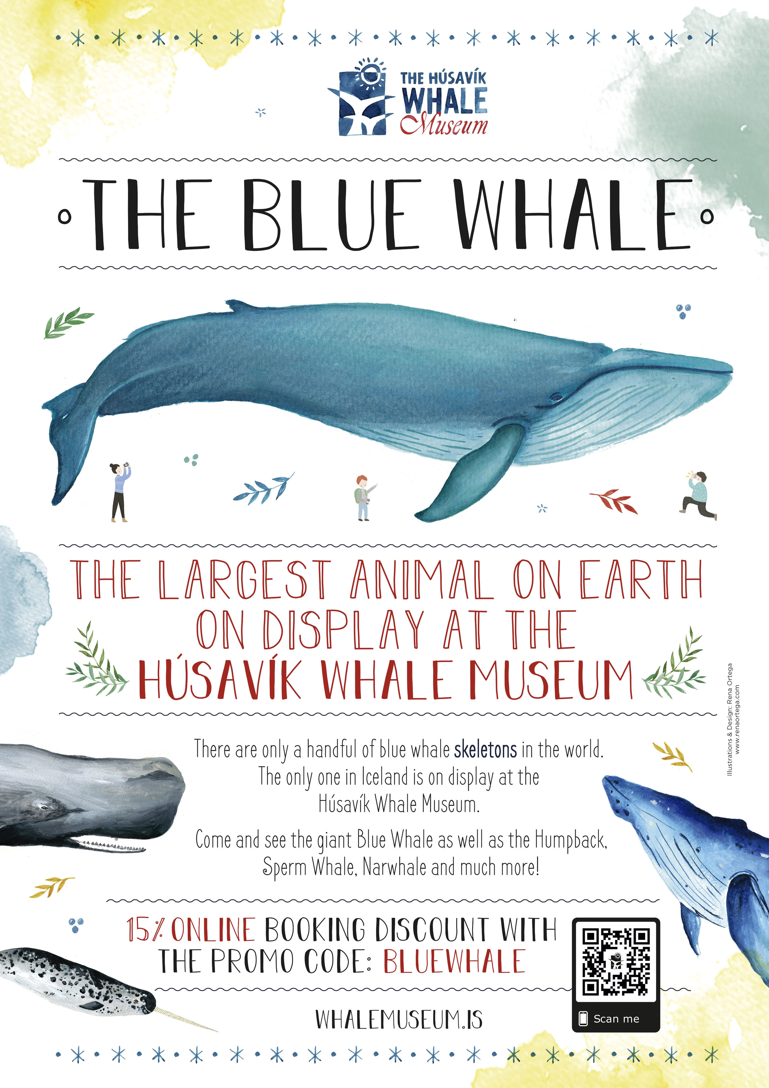 bluewhale_poster copia.jpg