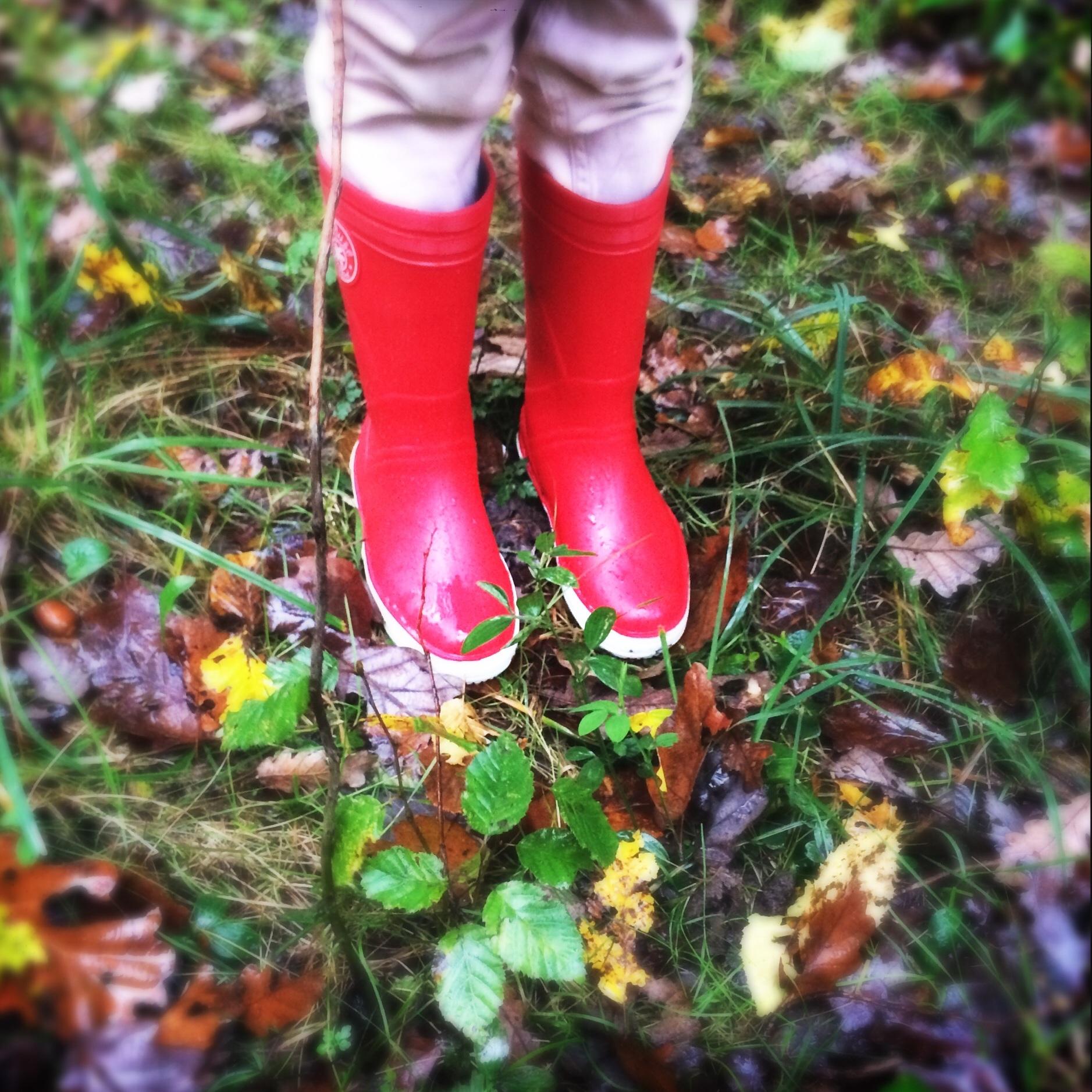 Herfstvakantie - Autumn Holiday, Les Vacances de Toussaint