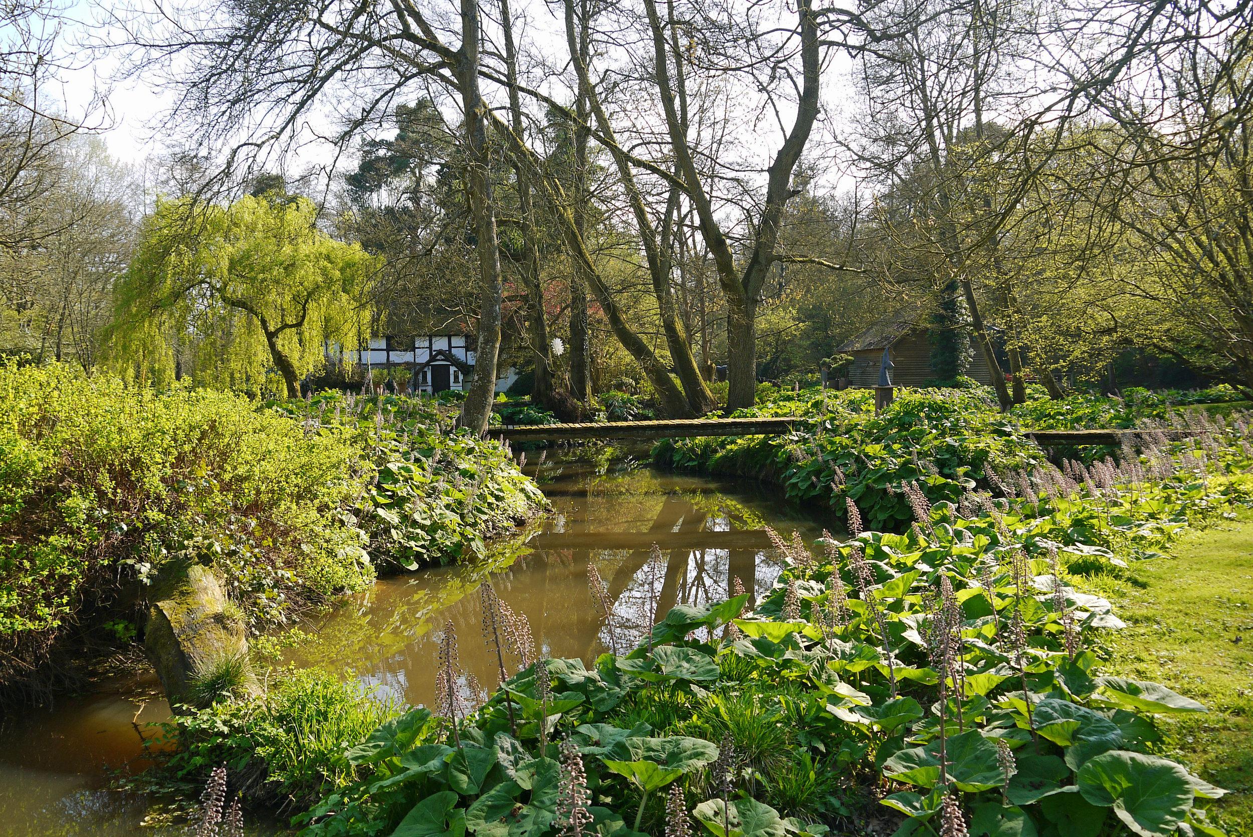Standon Stream with Balck & White Cottage.jpg