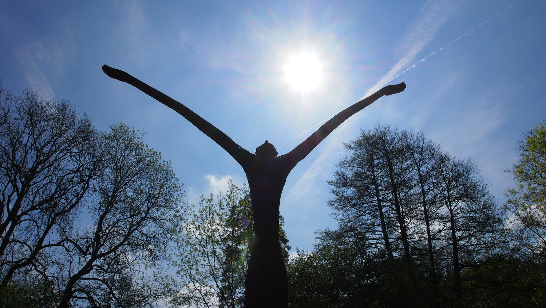 Exhibition Highlights — The Hannah Peschar Sculpture Garden