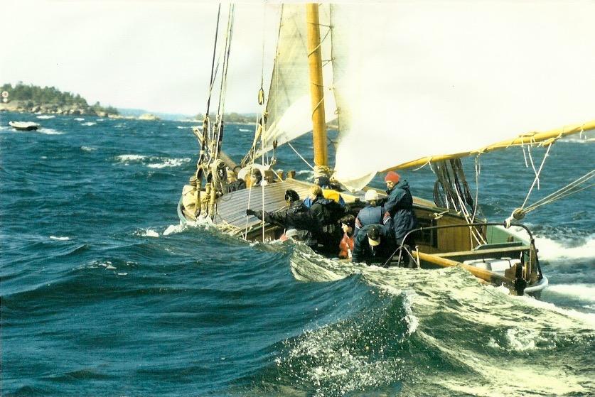 Fiskesumpen är även känd som segelsumpen jehu