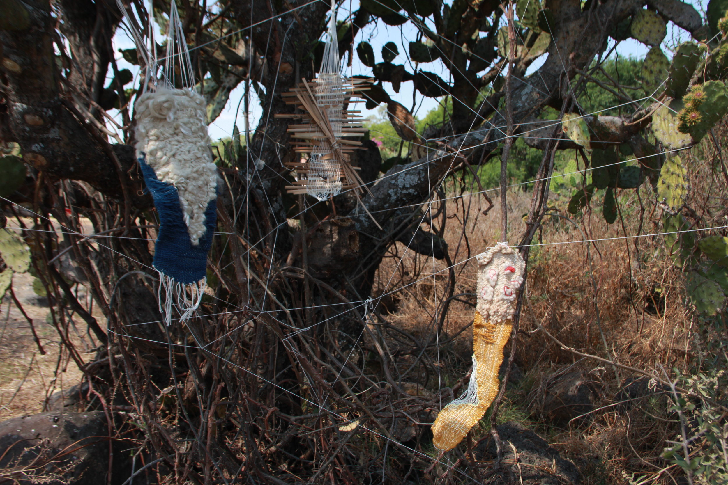 mis tres novias (2019)  Naturally dyed cotton, wool, hemp, linen, eucalyptus leaves, cacti  Site Specific sculpture: Guapamacataro Art and Ecology Center, Michoacan, Mexico  15 x 8 x 8ft