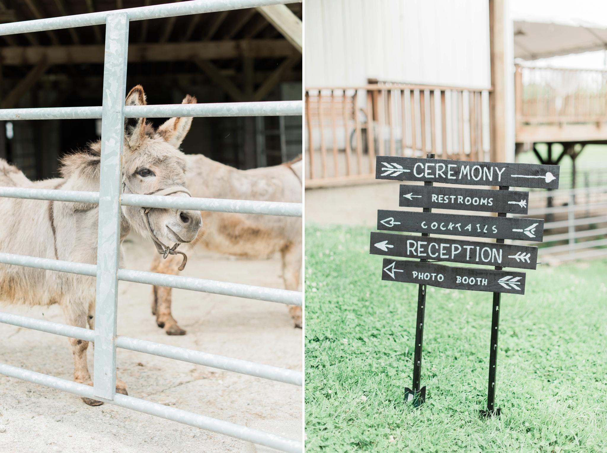 niederman-farm-wedding-cincinnati-ohio-photographer_0002.jpg