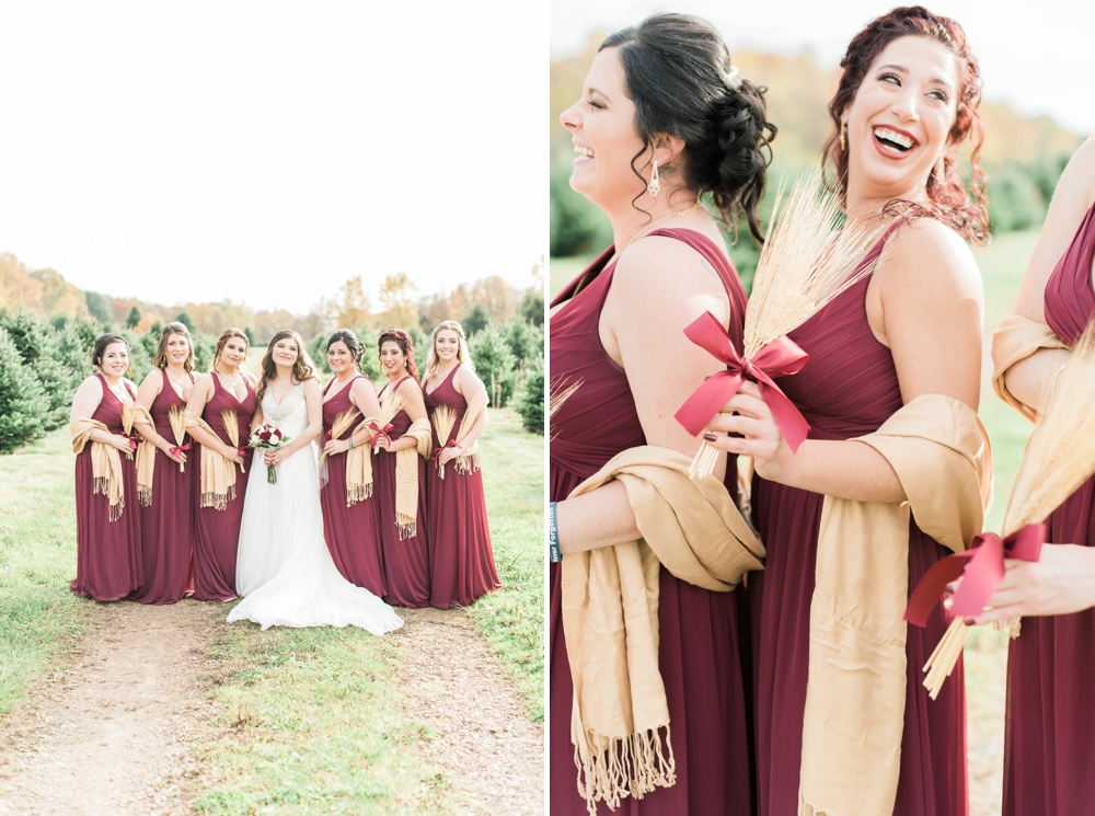ricciardis-tree-farm-wedding-wadsworth-ohio-lauren-ryan_0060.jpg