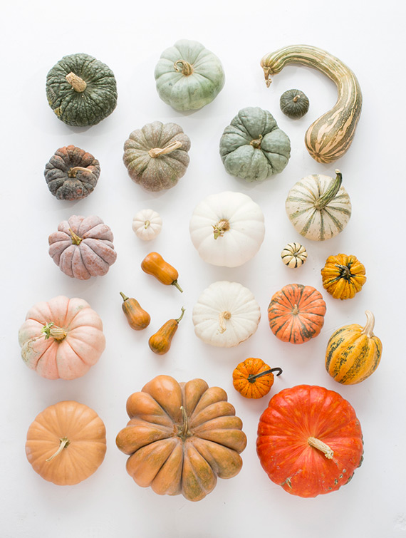 heirloom-pumpkins-fall-decor-1.jpg