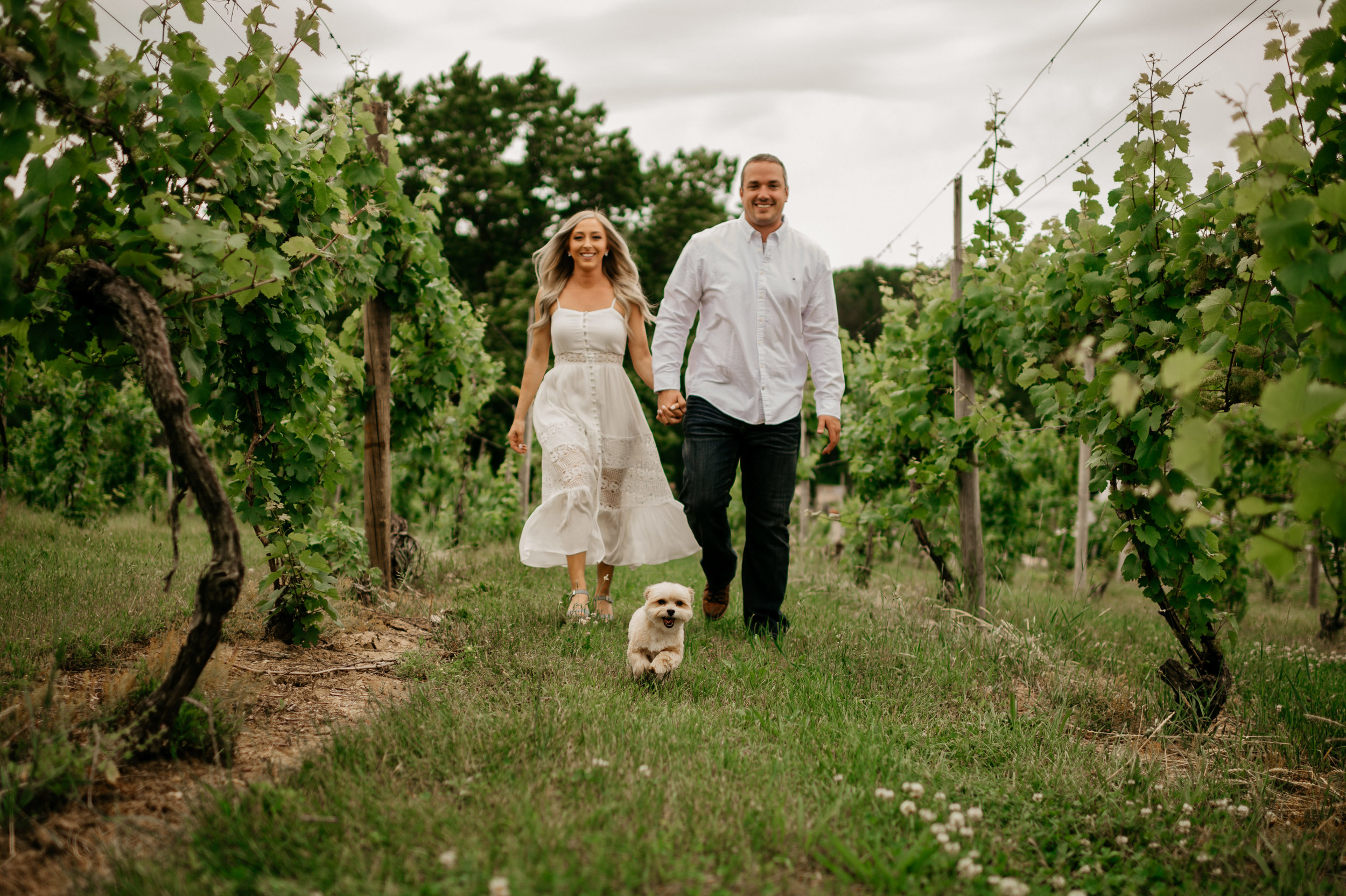 Tabor Hill Winery Engagement