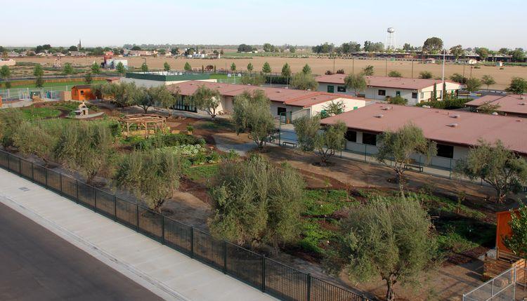 Grimmway Academy's Edible Schoolyard, Arvin CA