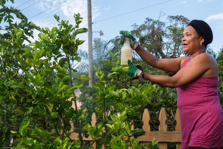 2 Iris Spraying Organic Pest Control Baking Soda, Vinegar, Dish Detergent, and Water .jpg