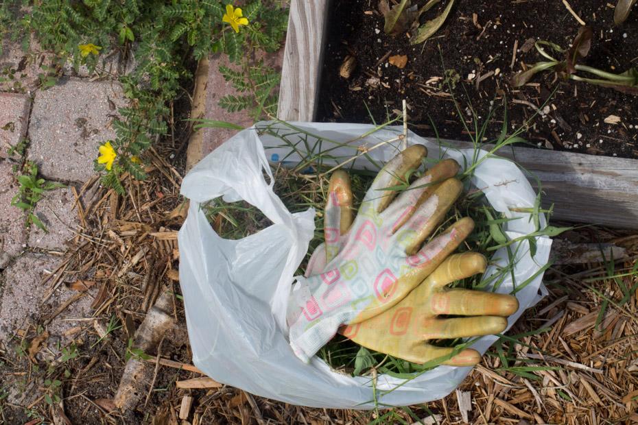 7 Susan's Bag Of Weeds.jpg