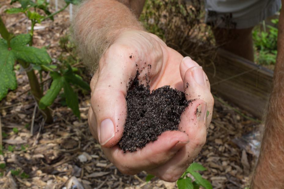 10 Fertile Soil.jpg