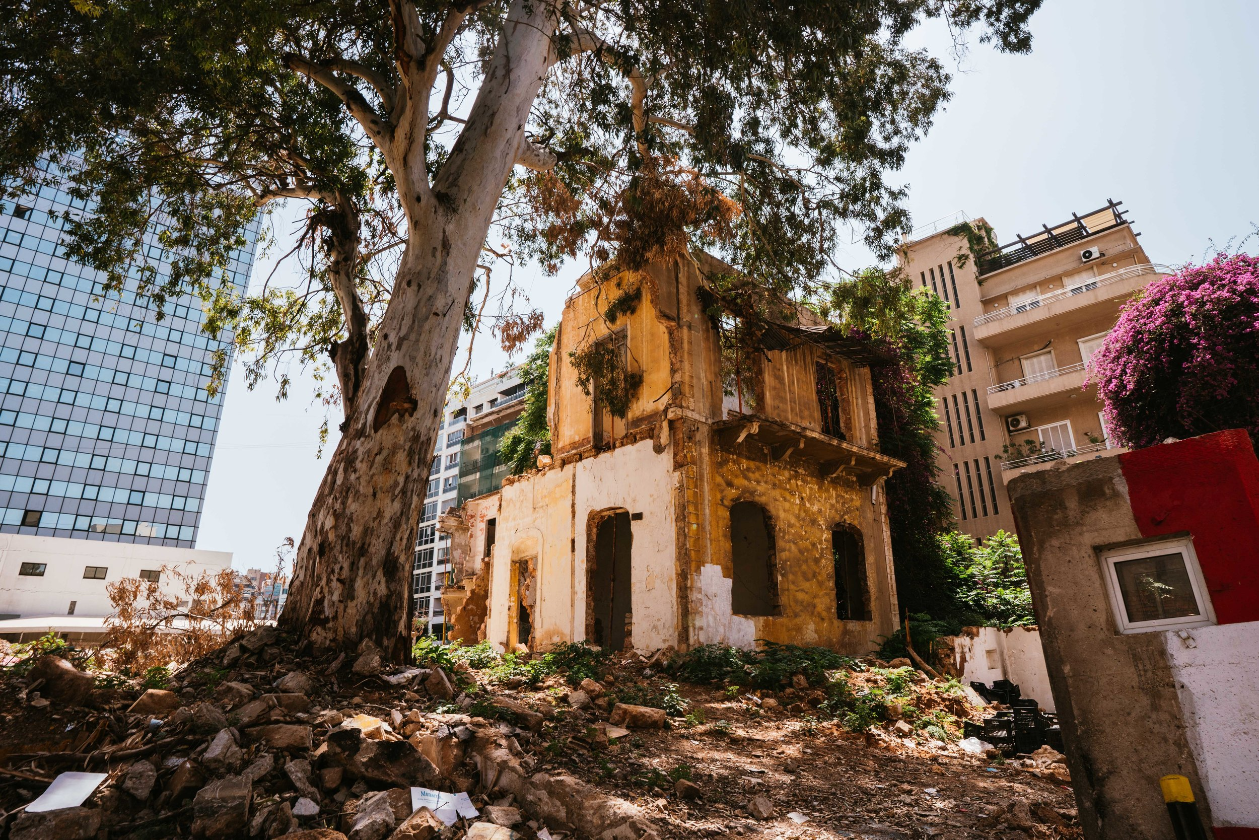 Lebanon visit-4.jpg
