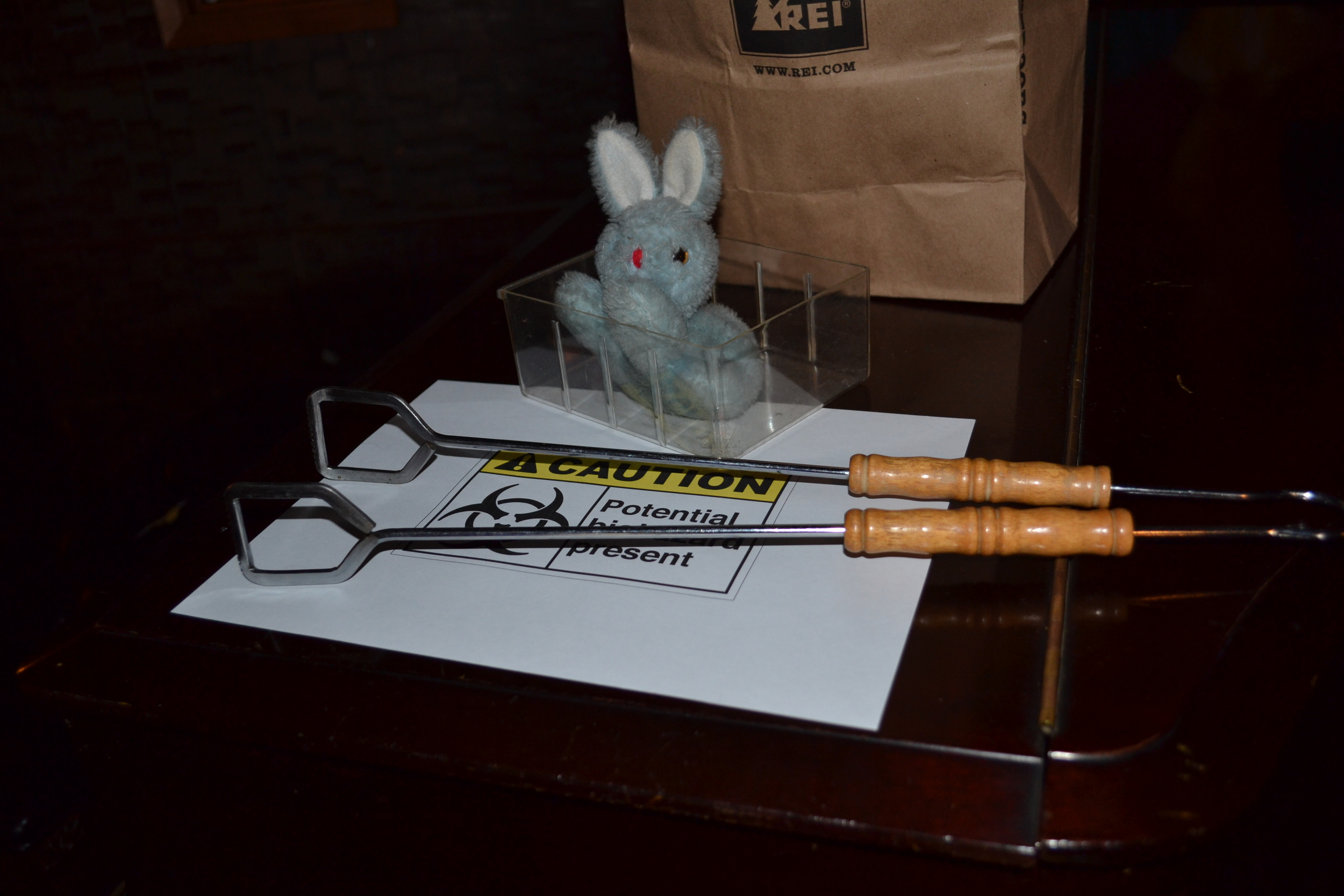 Blue Bunny - handle with care!