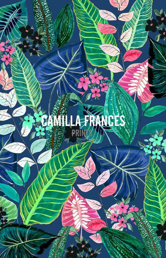 camillafrancesprintsposts.tumblr.com.jpg