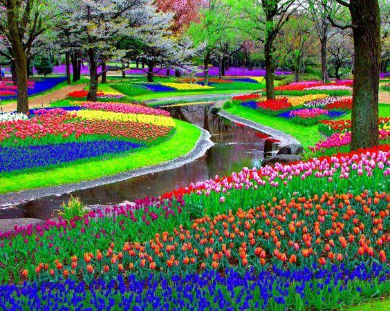 expressphotos.blogspot.com.jpg
