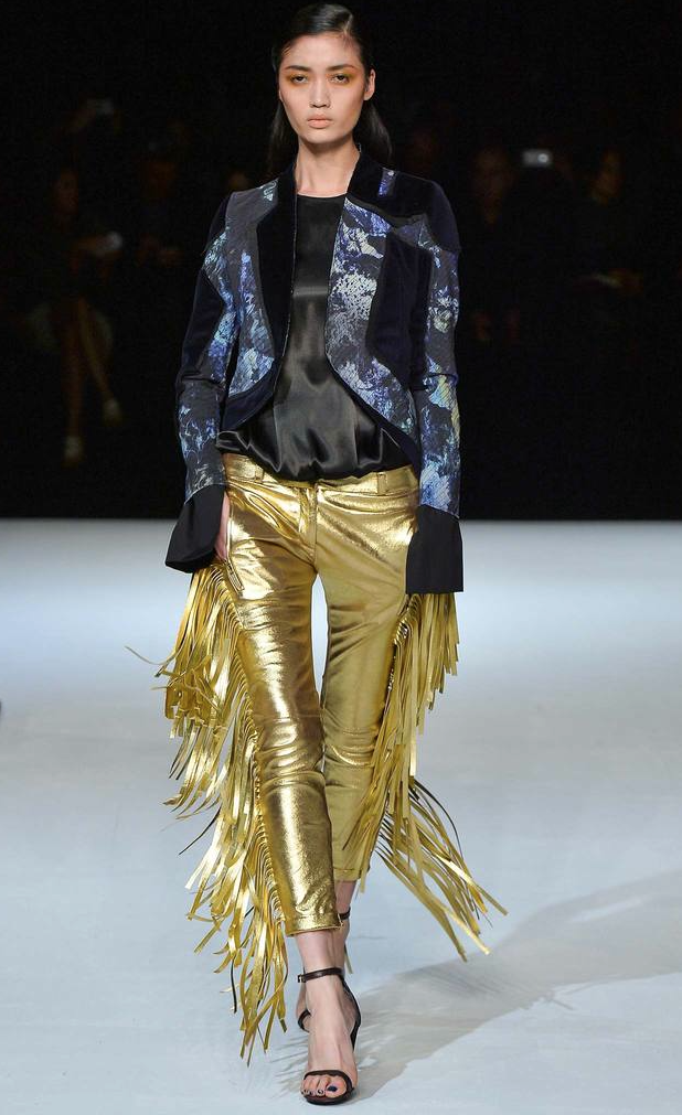 Just Cavalli Fall 2014 RTW Via style.com.png