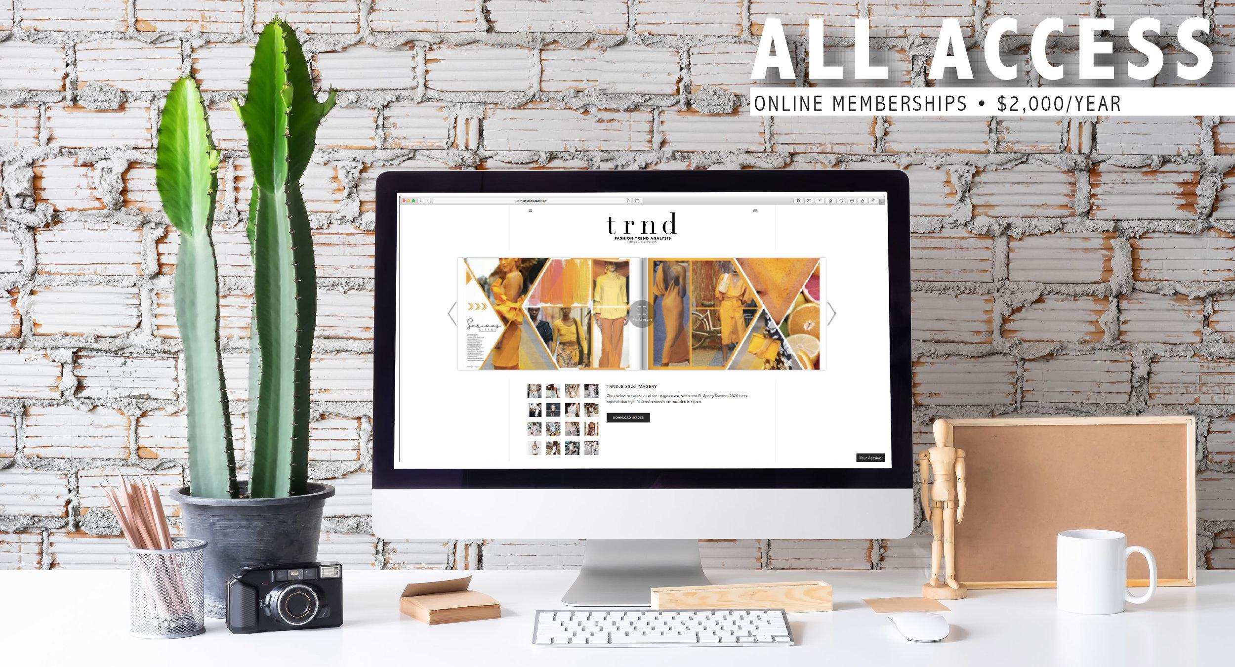 ALLACCESS_WEBPAGE-01.jpg