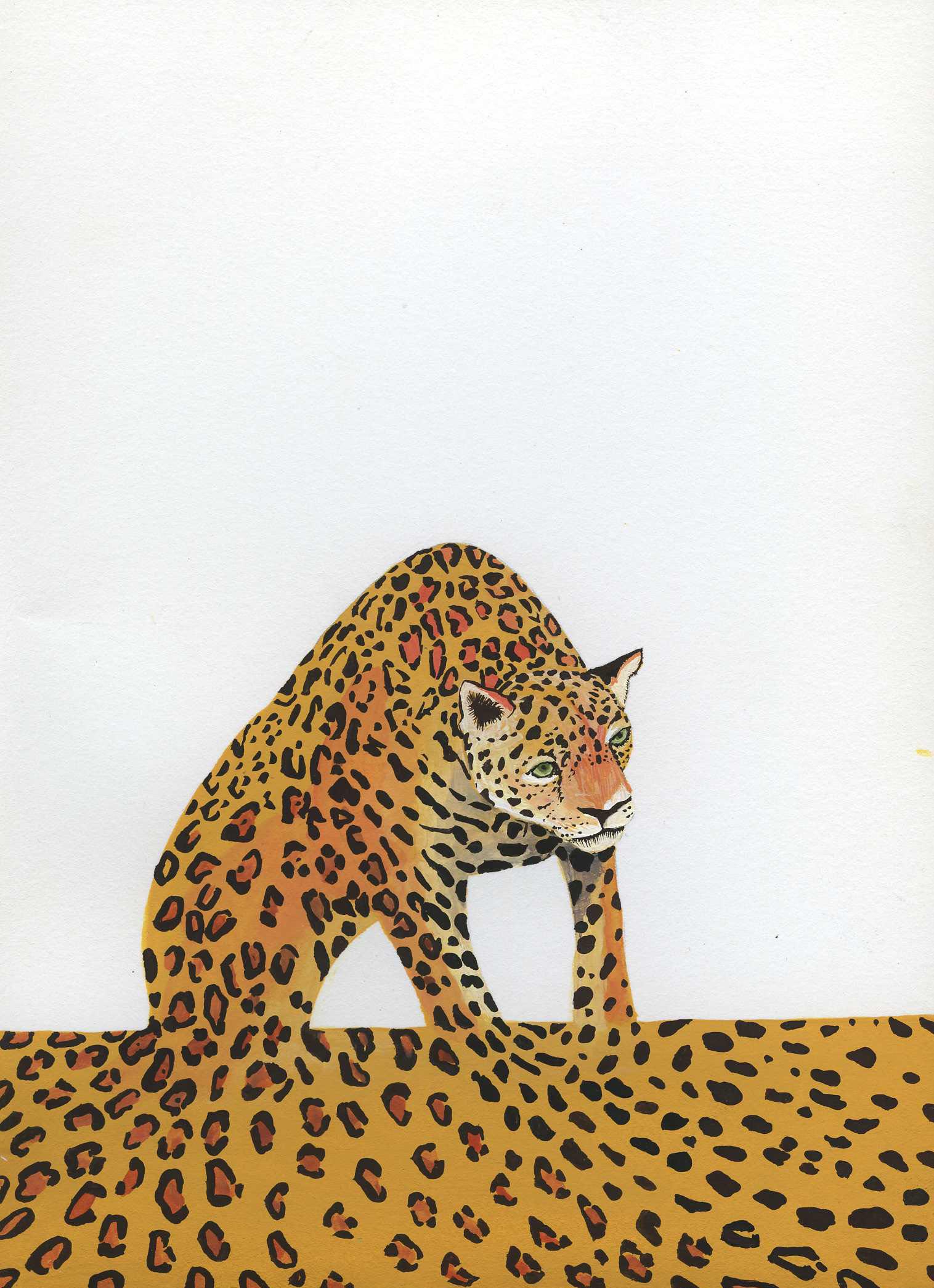 10. Jaguar .jpg