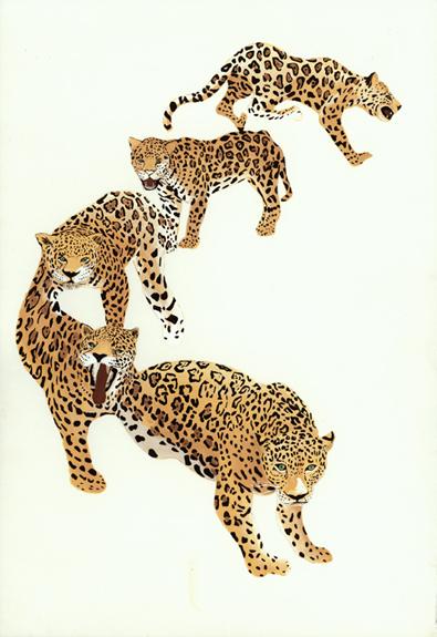 11. Jaguars.jpg