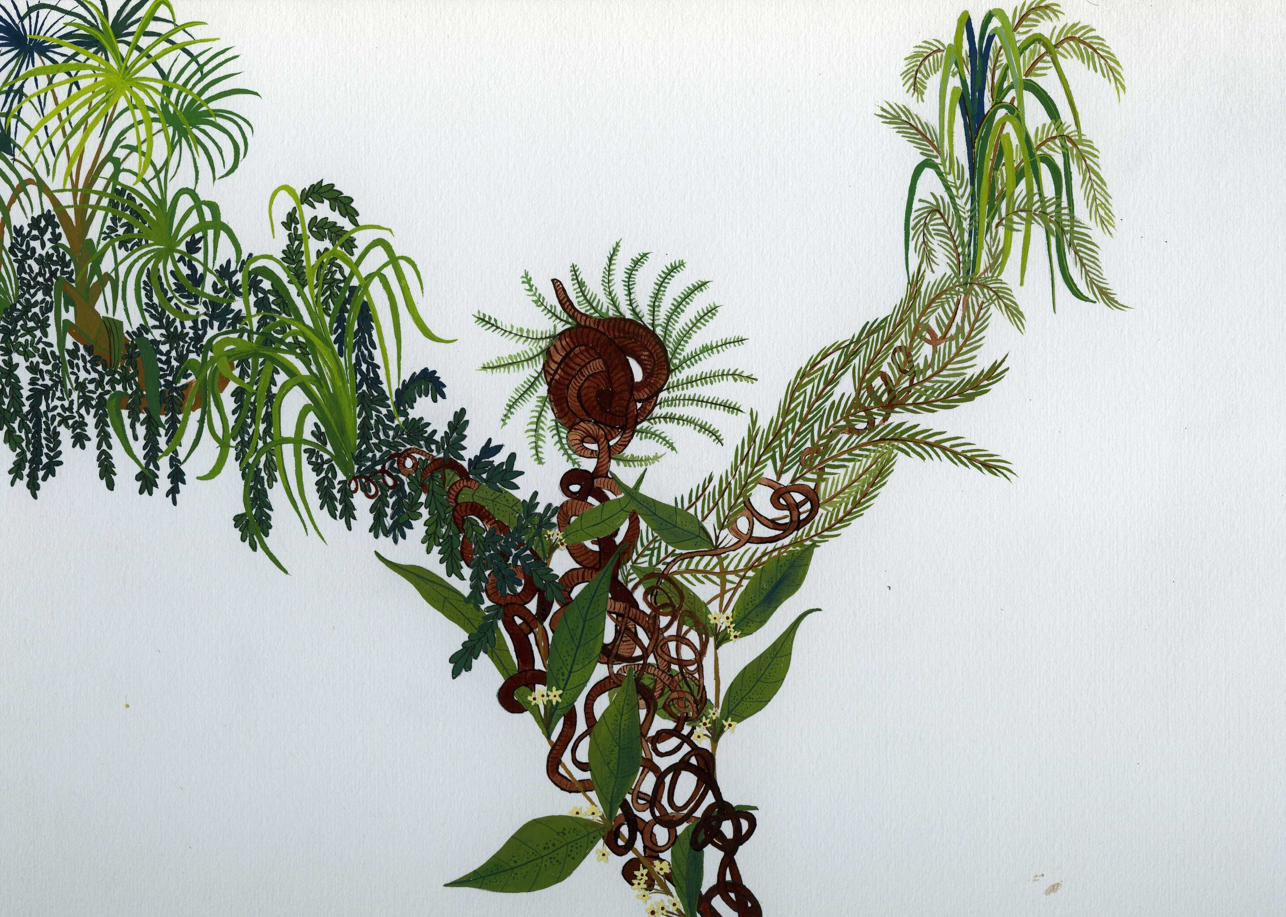 Flora #6.  2016