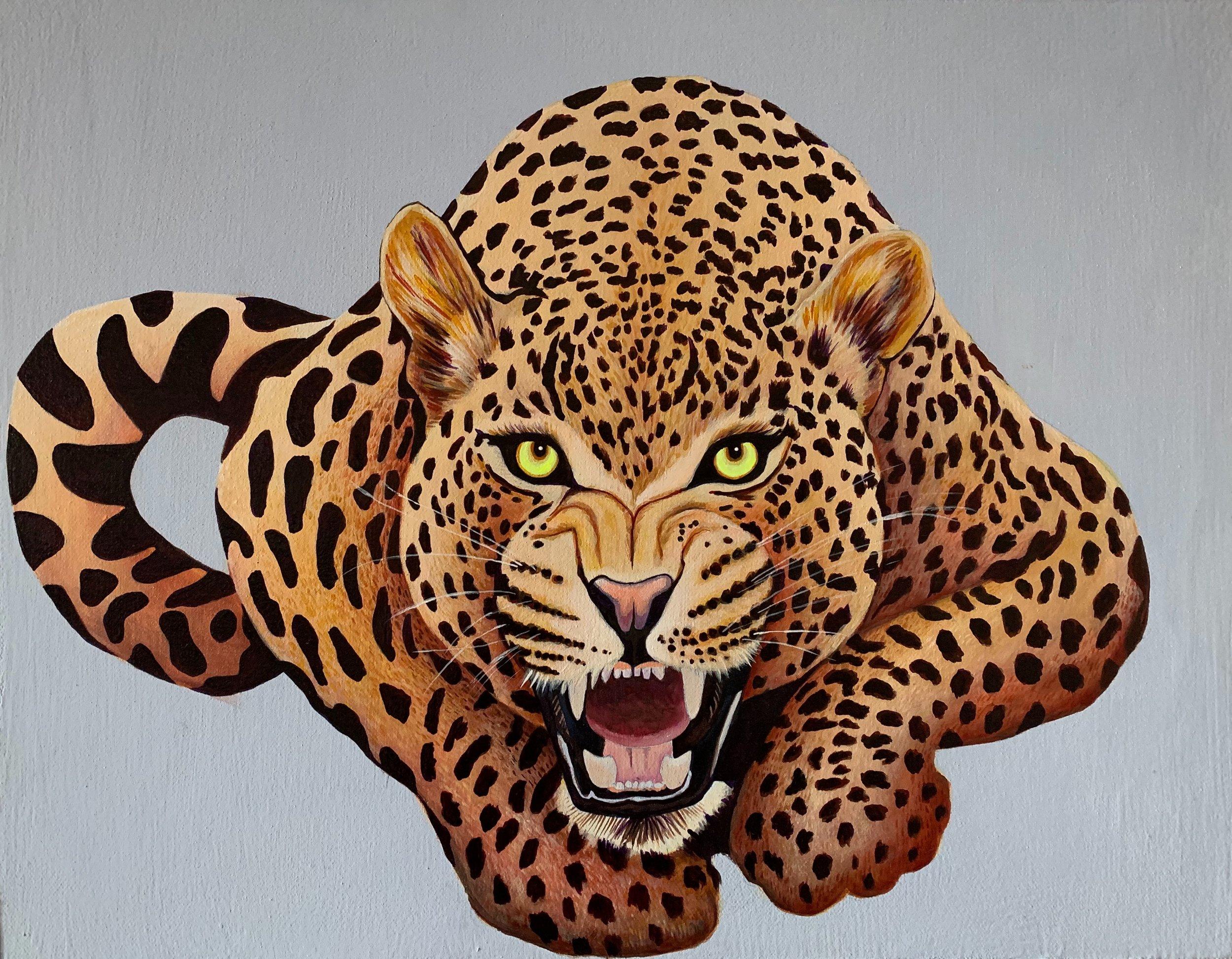 Jaguar 2.jpg