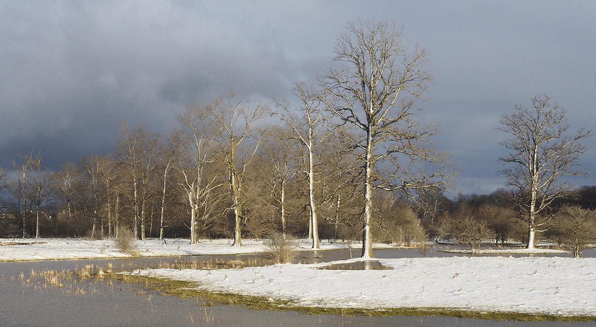 Wellesley, Ontario flood plain photography