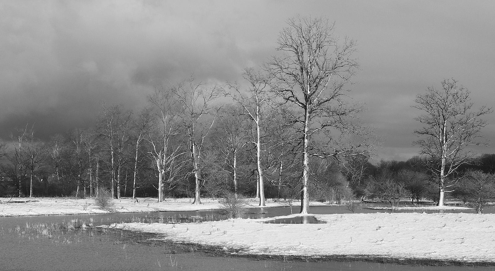 Wellesley Ontario floodplain landscape black and white photograph