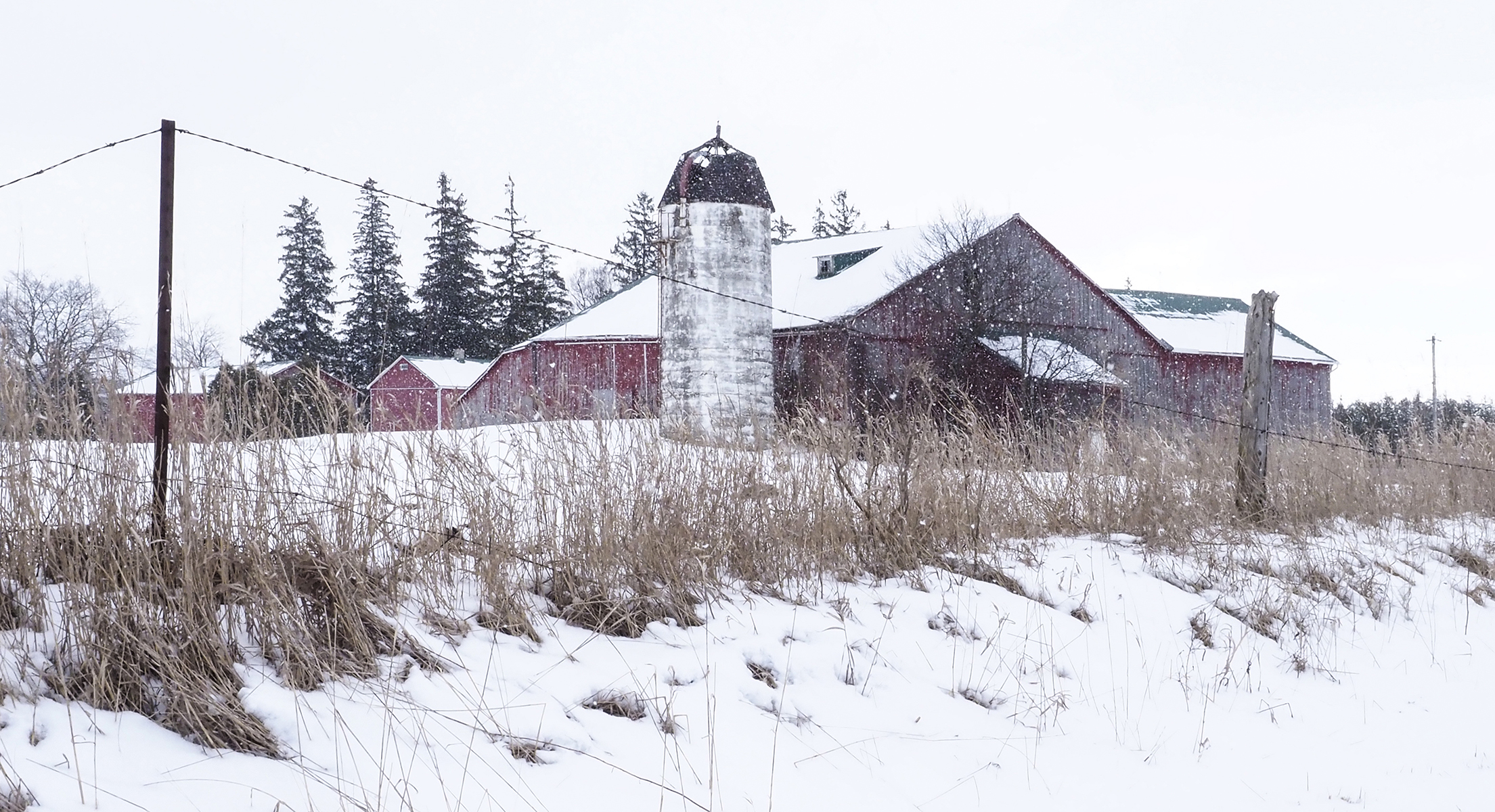 Winter photography scene south of Baden, Ontario by Susan Arness