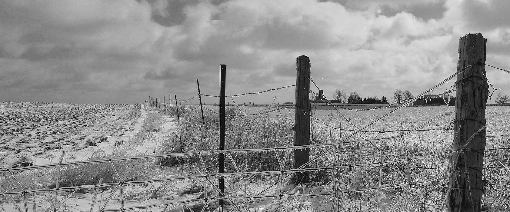 Snow, fence lines, winter, Waterloo county