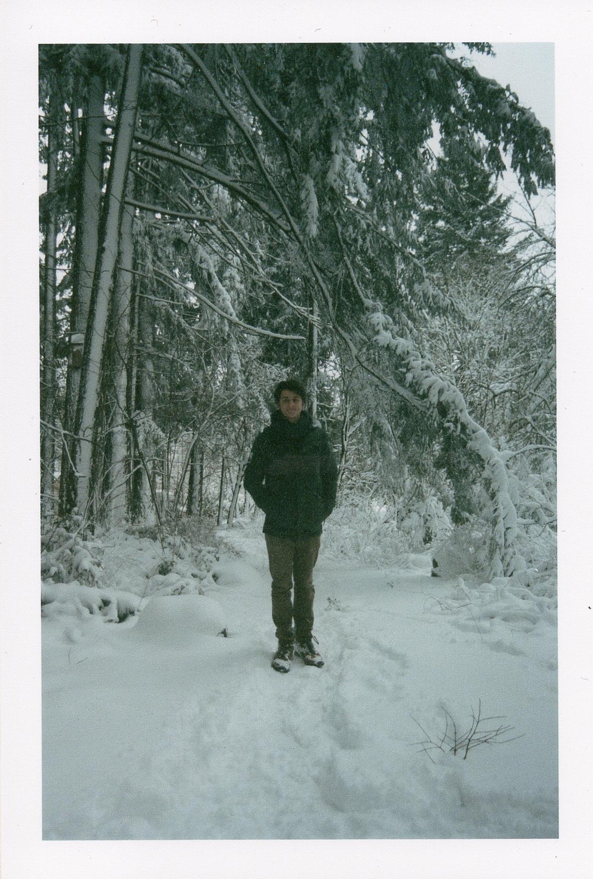 winterfilm-2.jpg
