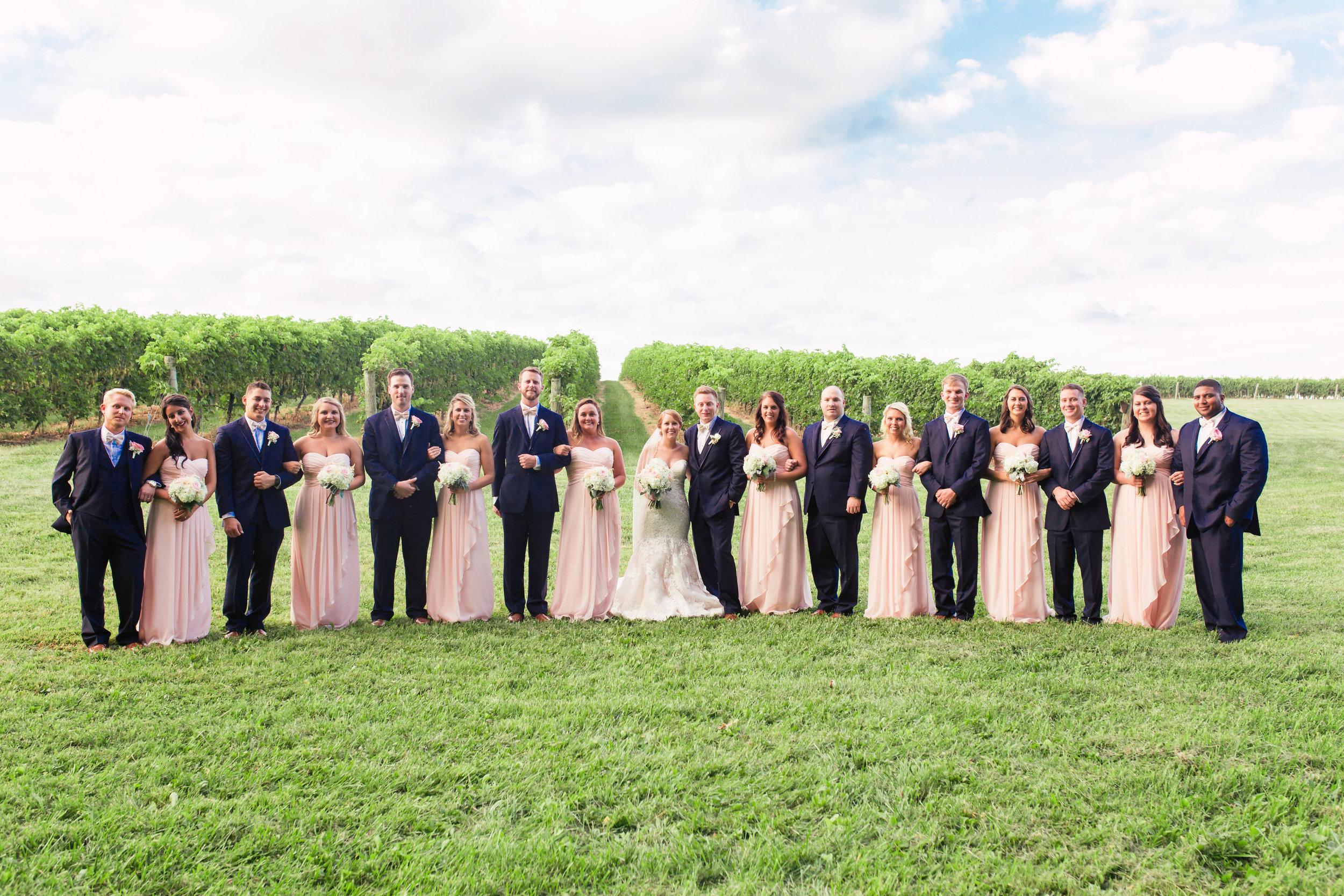 wedding party5.jpg