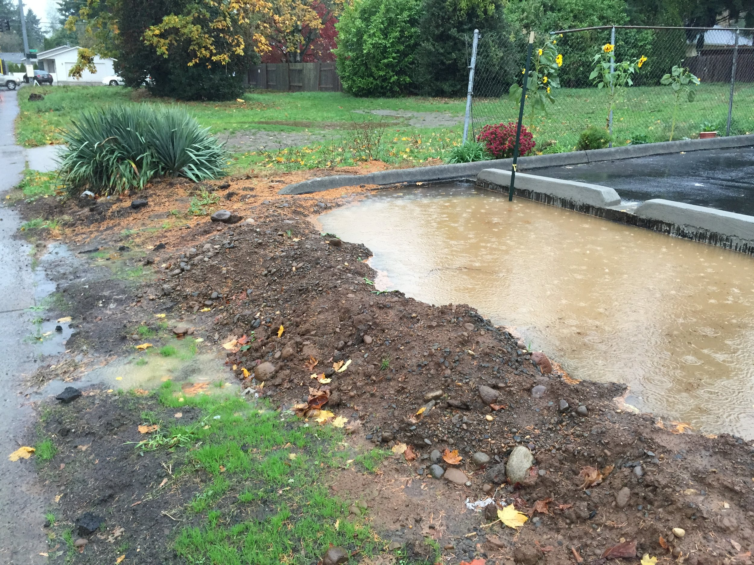 Site assessment and heavy rains show filtration issues caused by years of compaction. .