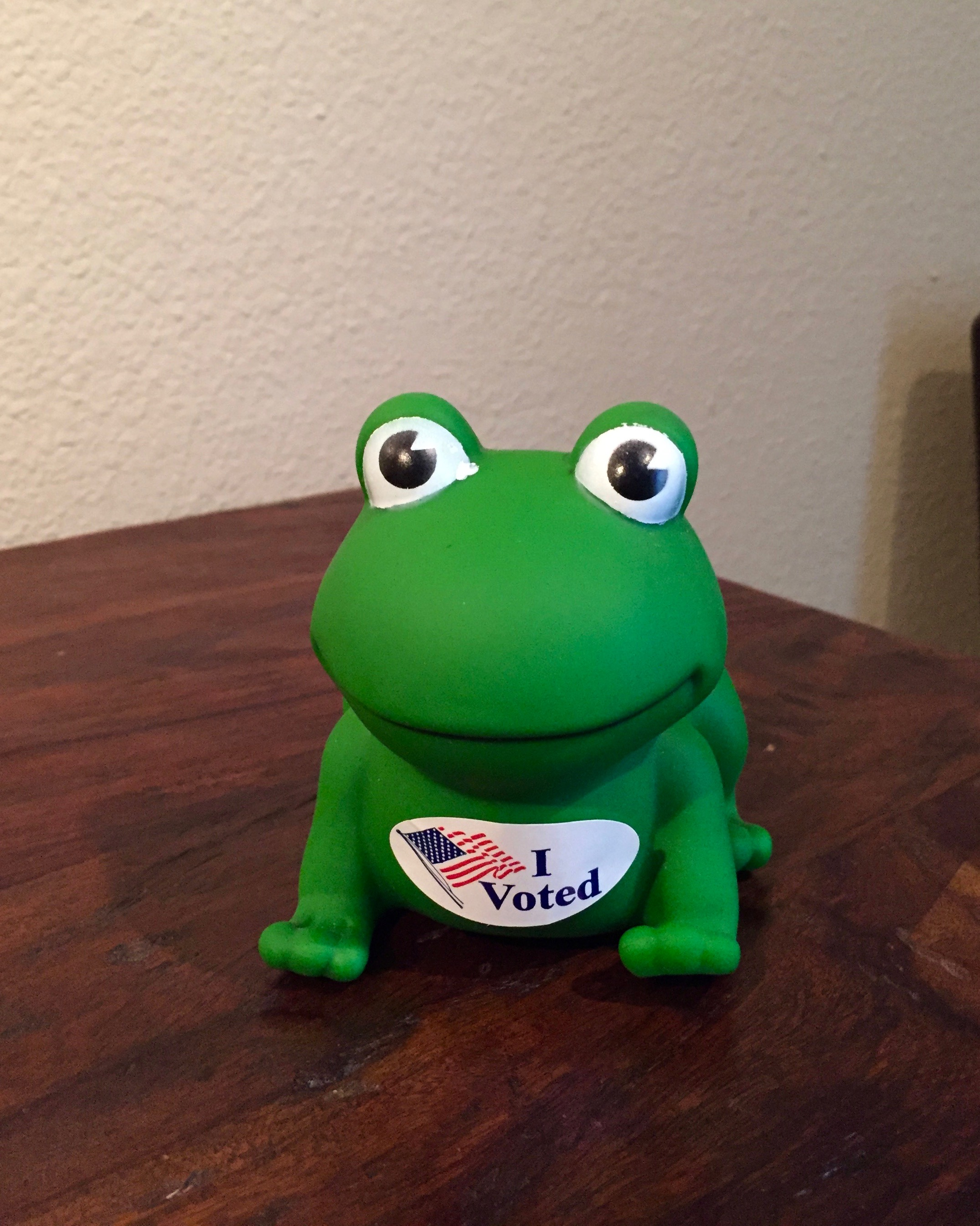 Voter FROG…not Voter Fraud…..JUST VOTE…
