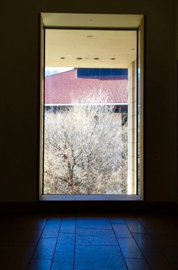 """The Other """"Art"""" Outside… Through The Blanton Museum of Art Window…"""
