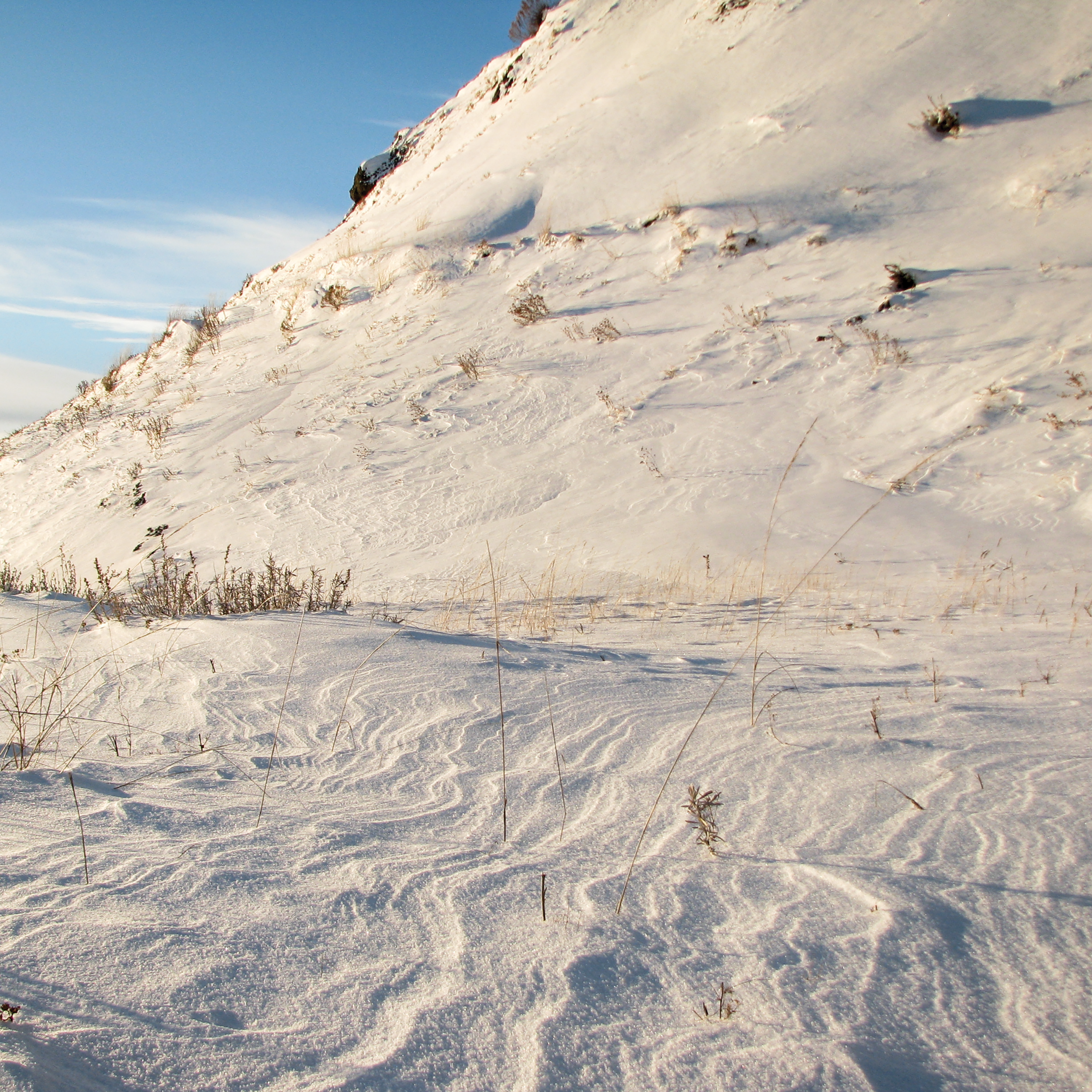 Snow Lines [RGB 3000 CS102 TL035].png