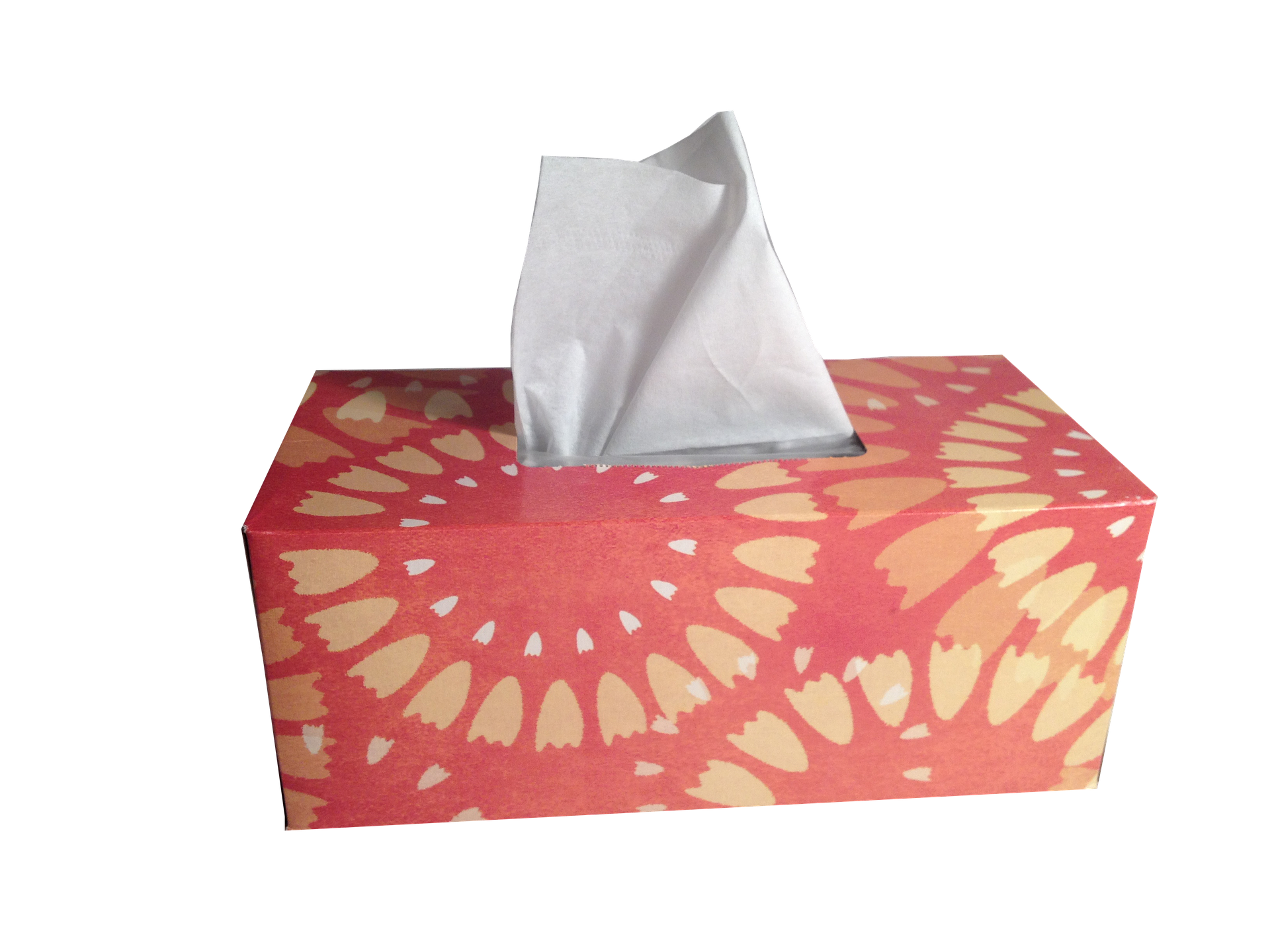 All tissue box sizes are acceptable and you can use as many tissue boxes as you wish to create the innovated product.   Check the Rules Tab for Specific Information!