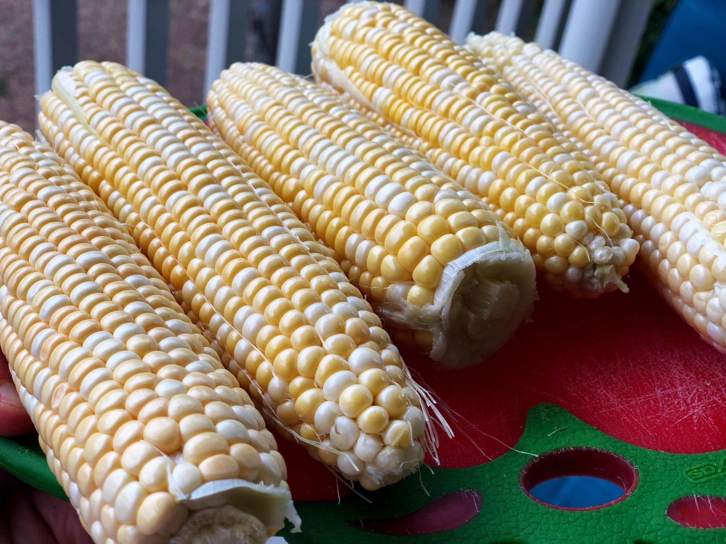 Corn raw.jpg