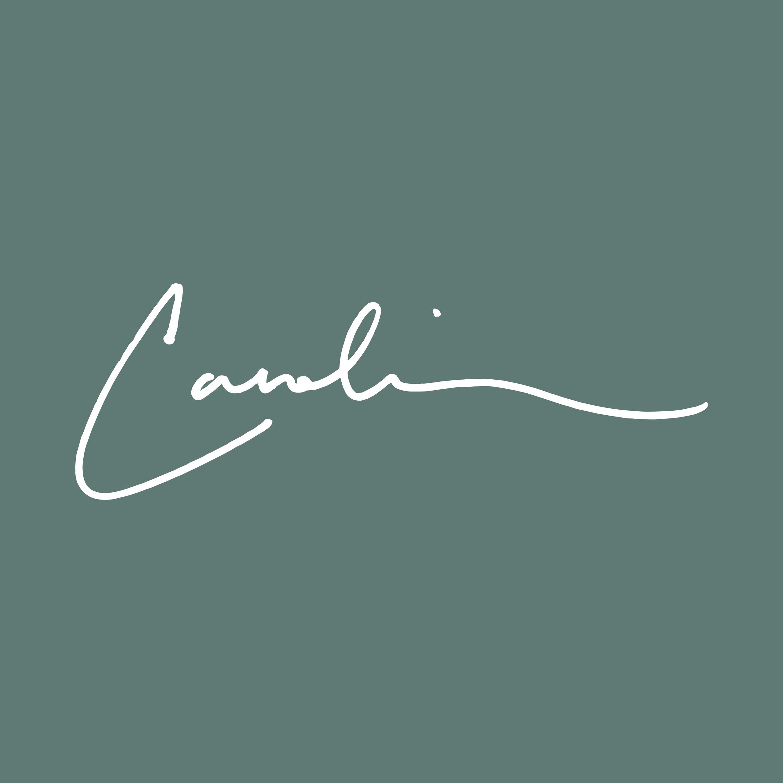 Caroline Boykin    brand // print
