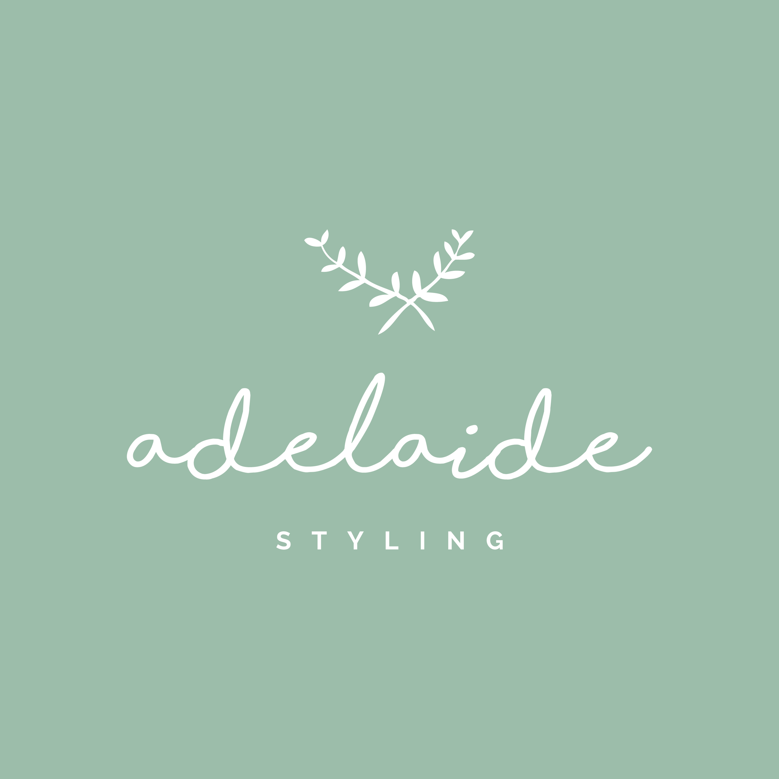 A  delaide Styling    brand // print