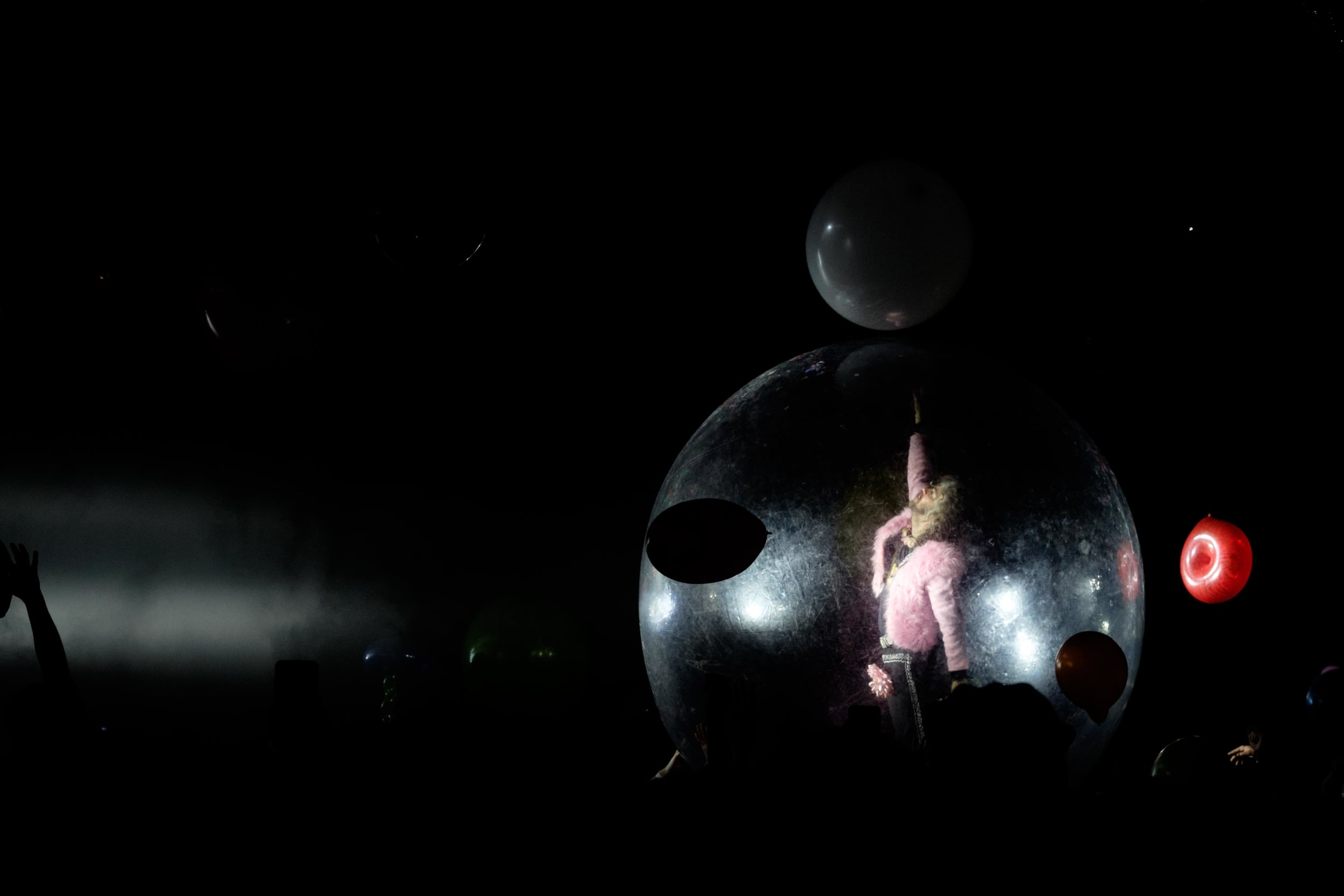 Wayne in Hamster Ball.jpg