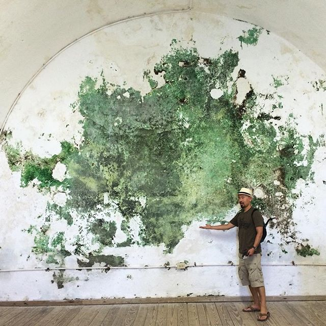 found art. a couple hundred years in the making. #sanjuan #fortress #nofilter #wanderwonder #fbf