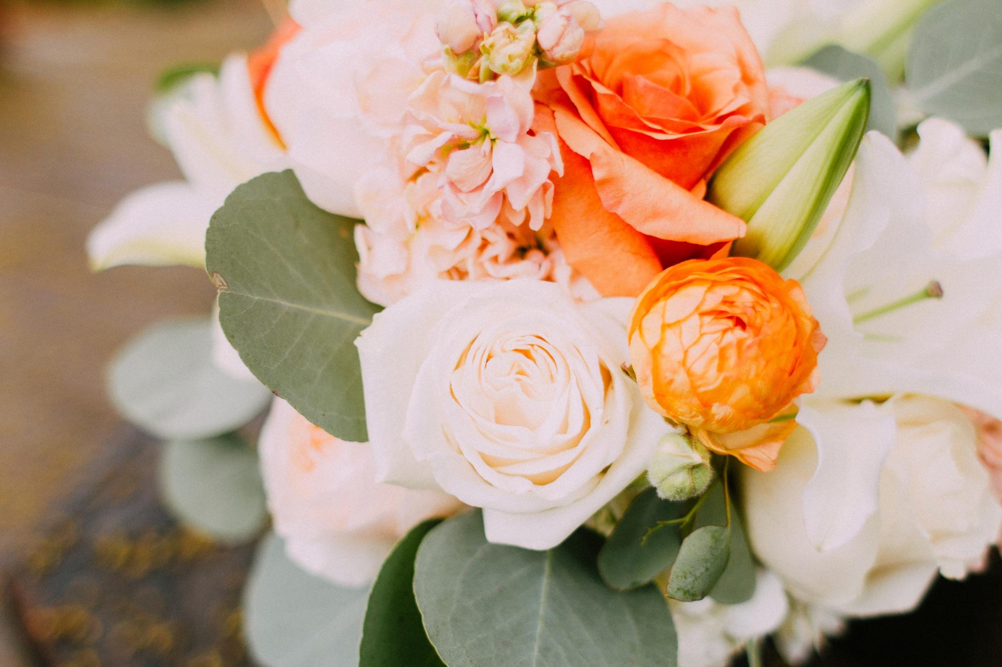 schmid_wedding-3.jpg