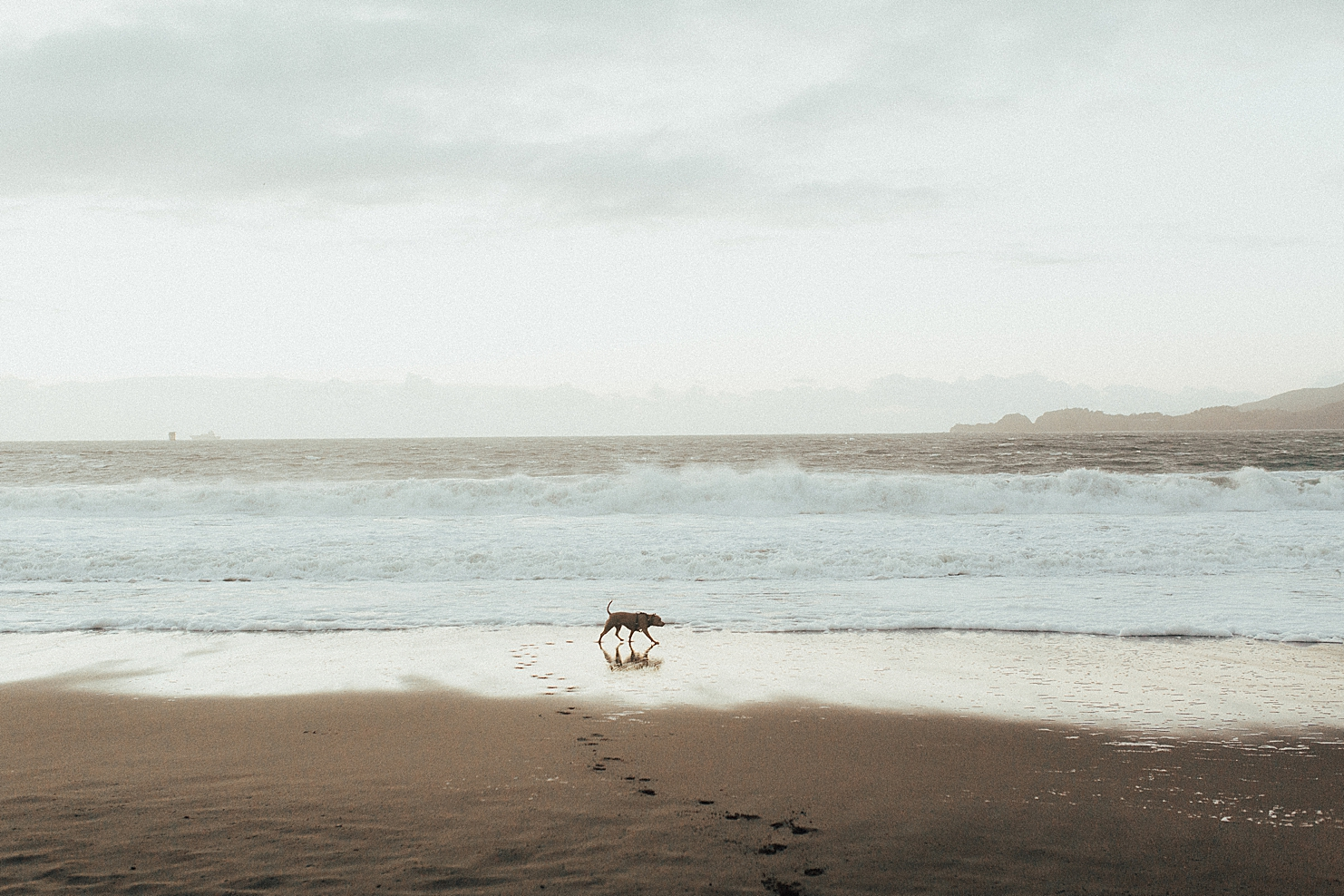 SanFranciscoEngagementPhotographyRachelWakefieldAlexaandJonathanEngagementPhotos(107of131).jpg