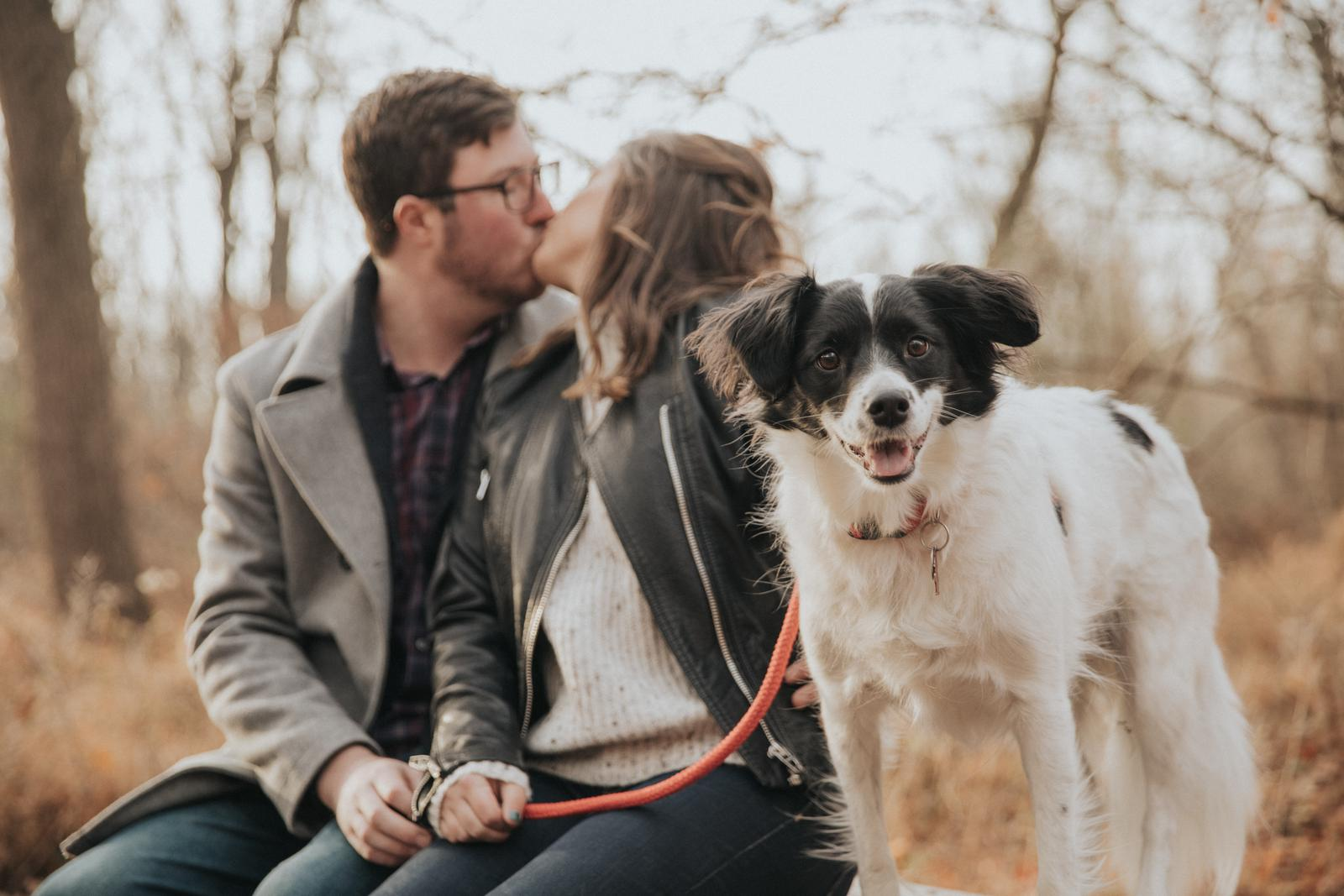 WRH Photography Woods Nature Dog Puppy Pet Engagement Session 001.JPG