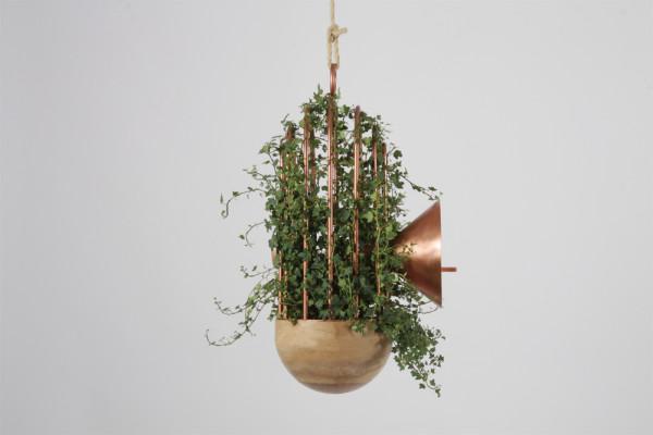 Orator-birds-nest-feeder-6-600x400.jpg