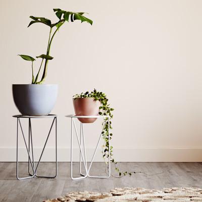 white-plant-stand-geometric-design-ivy-muse_1024x1024.jpeg