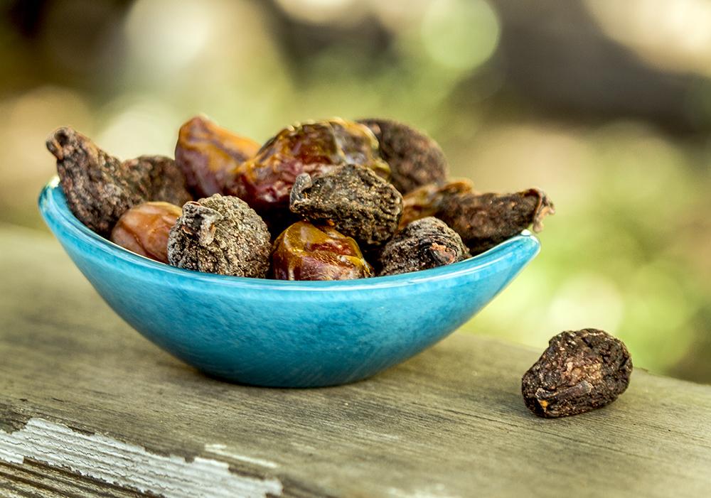 figs.1000.jpg